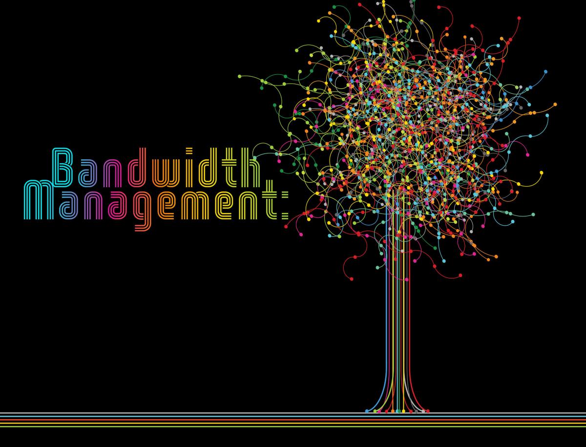 معرفة استهلاك الباندويدث لموقع عبر CWP